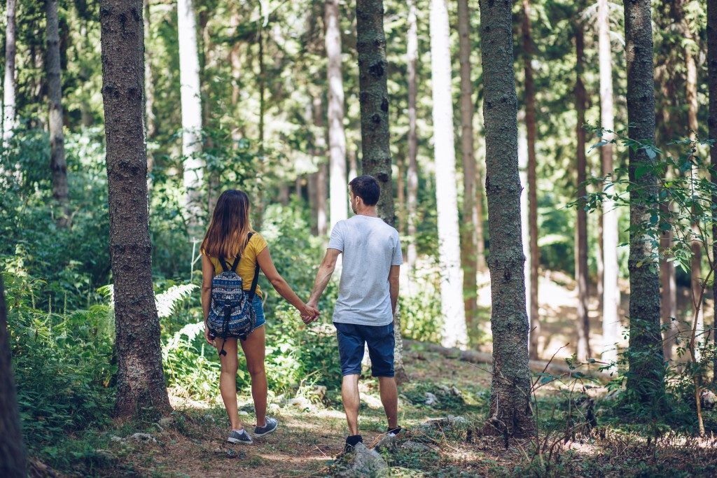 couple holding hands while walking in the forest