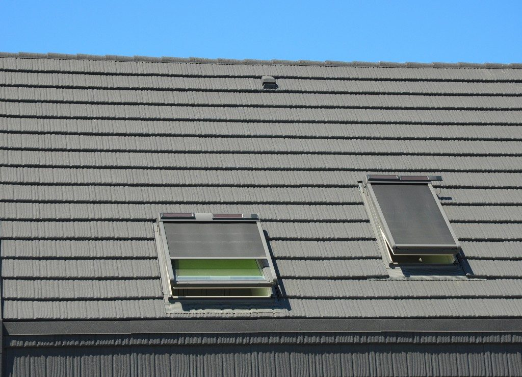 skylights on a home's rooftop