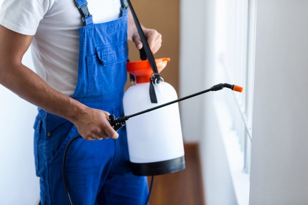 Man spraying pest exterminator