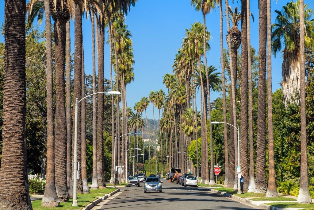Streets of Beverly Hills, California